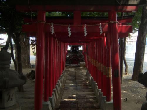 Hanazonodera torii e altare