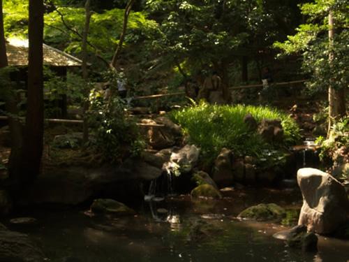 Scorcio piccole cascate Little waterfalls in Rikugien garden