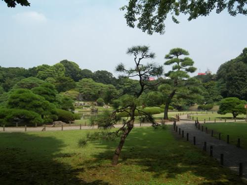 vegetazione giardini rikugien