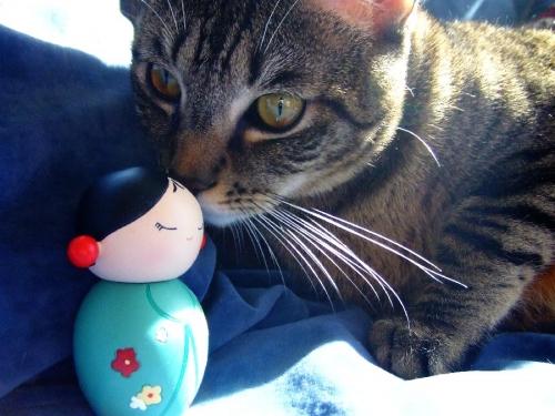 Bambole Momiji ... con il gatto