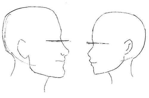 disegno manga dimensioni della testa