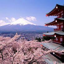 Concorso: vinci un viaggio in Giappone