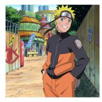 Milano Manga Festival: Mostra Speciale Naruto