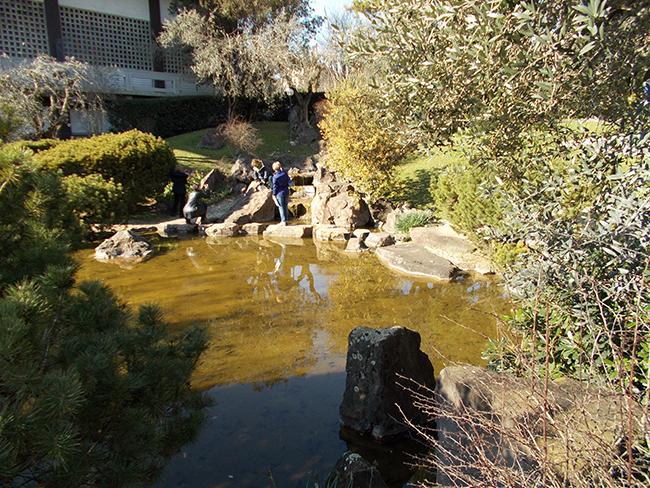 Un giro per il giardino giapponese all istituto di cultura di roma