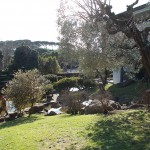 7-Giardino-Giapponese-a-Roma